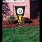 "Pittsburgh Steelers Indoor Outdoor Pennant Brand New 34""x14"""