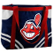 Cleveland Indians Canvas Tailgate Tote Bag Purse