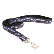 Baltimore Ravens Medium Dog Ribbon Lead Leash Nylon 6' Long